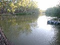 MURRAY RIVER Picture