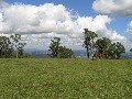 Welcome to Mingara Estate on Tamborine Mountain-Developer Wants Them Sold And Has Reduced His Prices! Picture