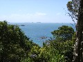 PANORAMIC SEA VIEWS - HEKERUA BAY Picture