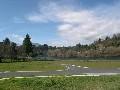 Rangatira Park Picture