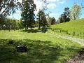 ORUANUI - LAKE TAUPO Picture