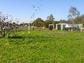 A VACANT 3/4 ACRE IN TOWN Picture