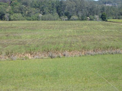 Rural Acreage with River Frontage Picture