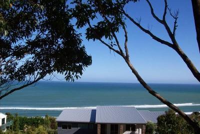 AHIPARA BAY Picture