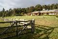 Glen William ~ Hunter Valley Picture