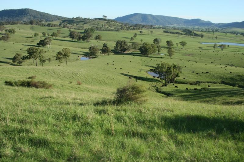 Peaceful Pastoral Hideway Picture 2