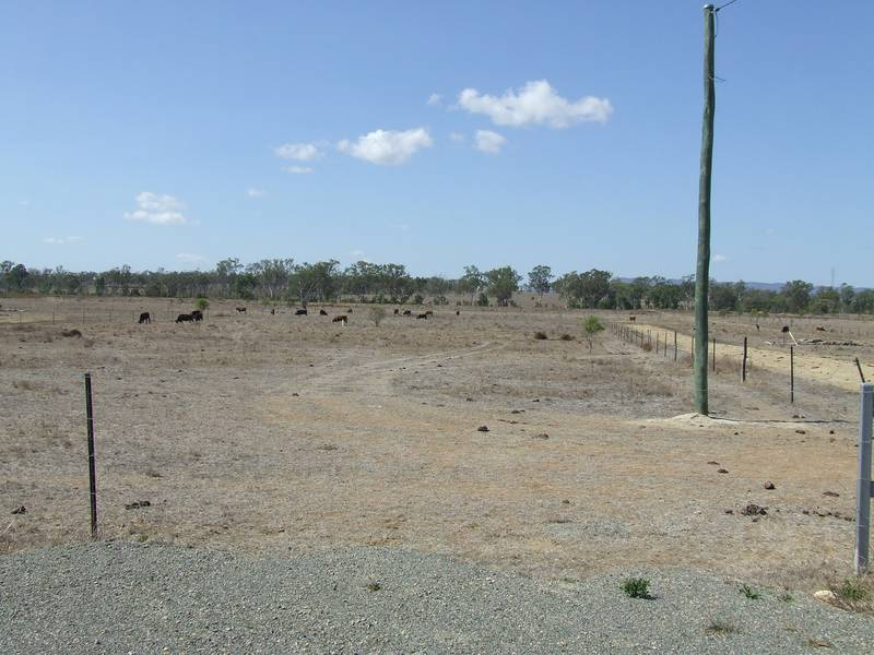 Acreage On The Edge Of Gracemere Picture 3