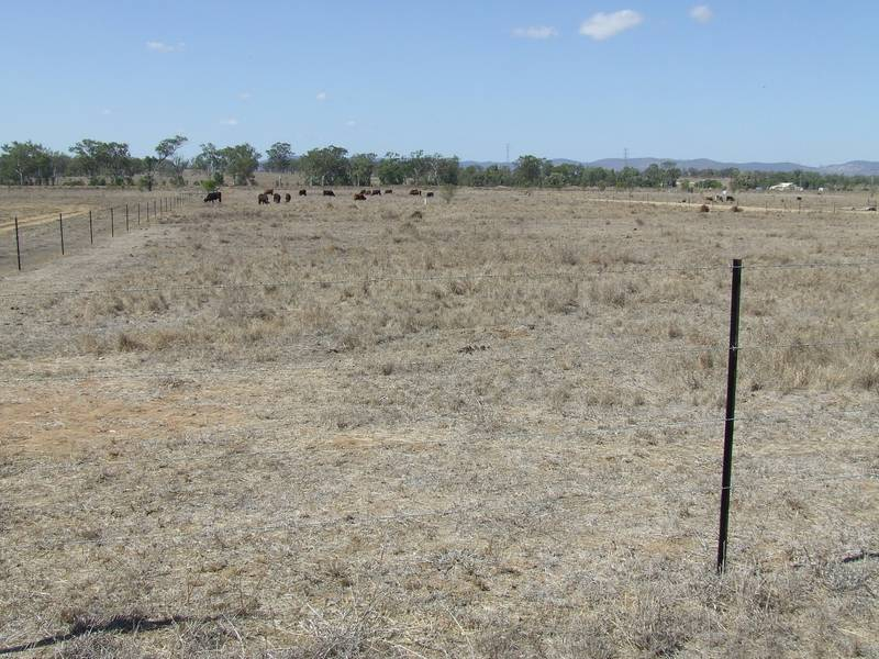 Acreage On The Edge Of Gracemere Picture 2