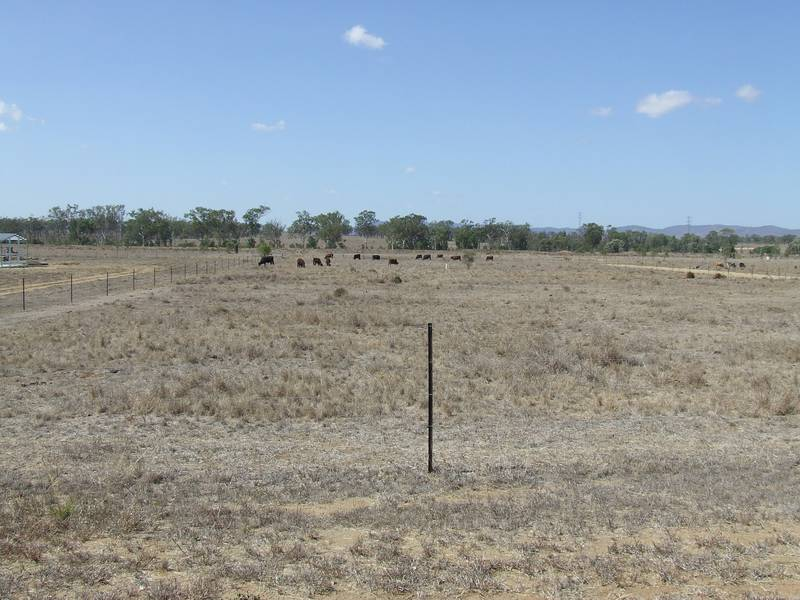 Acreage On The Edge Of Gracemere Picture 1