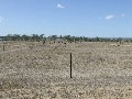 Acreage On The Edge Of Gracemere Picture