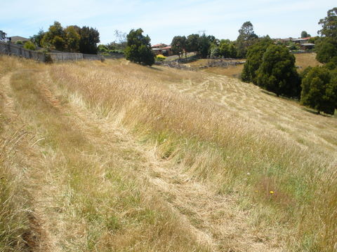 HOUSE AND 11 ACRES OF RESIDENTIAL LAND IN BURNIE Picture 3