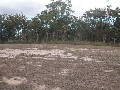 READY TO BUILD ON NOW- 1 ACRE CLOSE TO TOWN! Picture