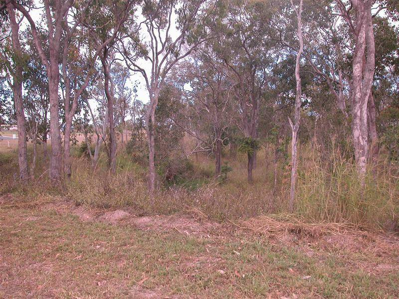READY TO BUILD ON NOW- 1 ACRE CLOSE TO TOWN! Picture 2