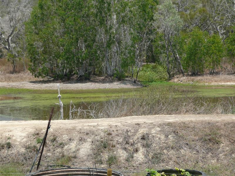 LIFESTYLE GETAWAY- Over 48 Acres of privacy! Picture 1