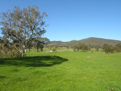 EMU CREEK - 163 Acres / 65 Hectares Picture