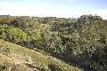 2.534 ha close to Keilor Village with River Frontage Picture