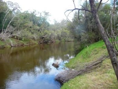 SWAN RIVER FRONTAGE Picture