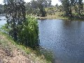 Double Frontage to the Gwydir RIver Picture