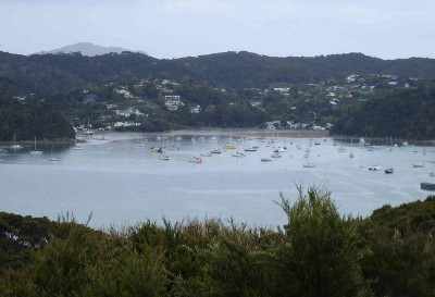 PRIVATE HIDEAWAY -BEACH ACCESS- EXCLUSIVE RUSSELL BAY OF ISLANDS. Picture