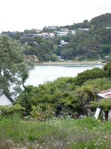 WATER VIEWS - EASY BUILD SITE -RUSSELL BAY OF ISLANDS Picture