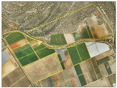 270HA IRRIGATED HORTICULTURAL HOLDING offer Residential